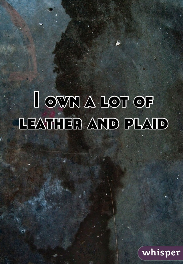 I own a lot of leather and plaid