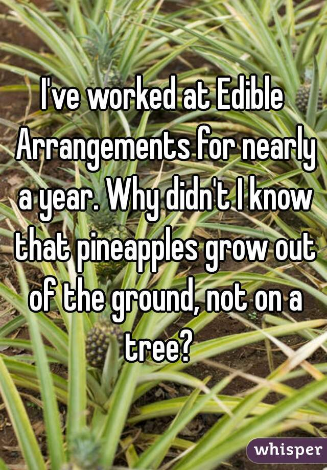 I've worked at Edible Arrangements for nearly a year. Why didn't I know that pineapples grow out of the ground, not on a tree?