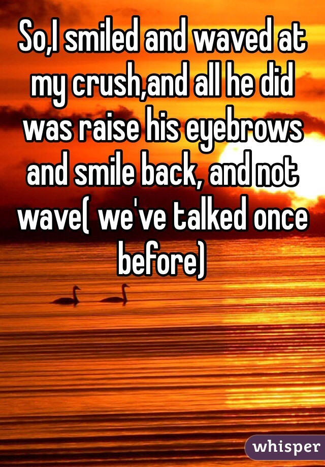 So,I smiled and waved at my crush,and all he did was raise his eyebrows and smile back, and not wave( we've talked once before)