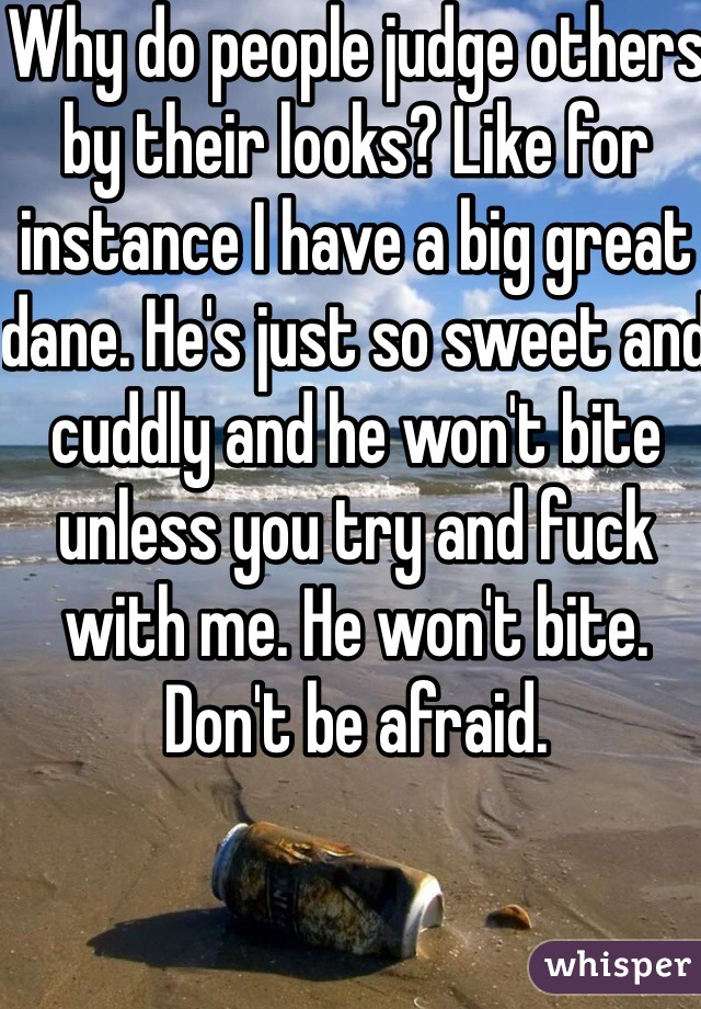 Why do people judge others by their looks? Like for instance I have a big great dane. He's just so sweet and cuddly and he won't bite unless you try and fuck with me. He won't bite. Don't be afraid.