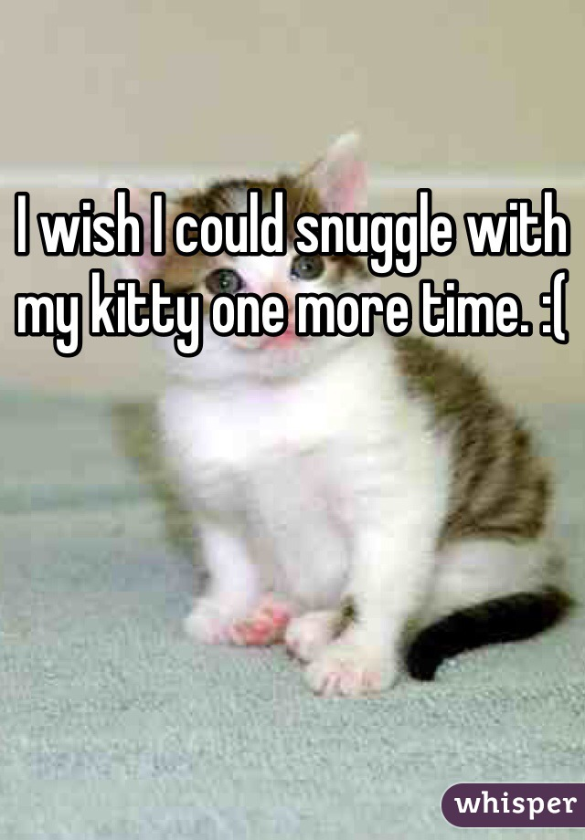 I wish I could snuggle with my kitty one more time. :(