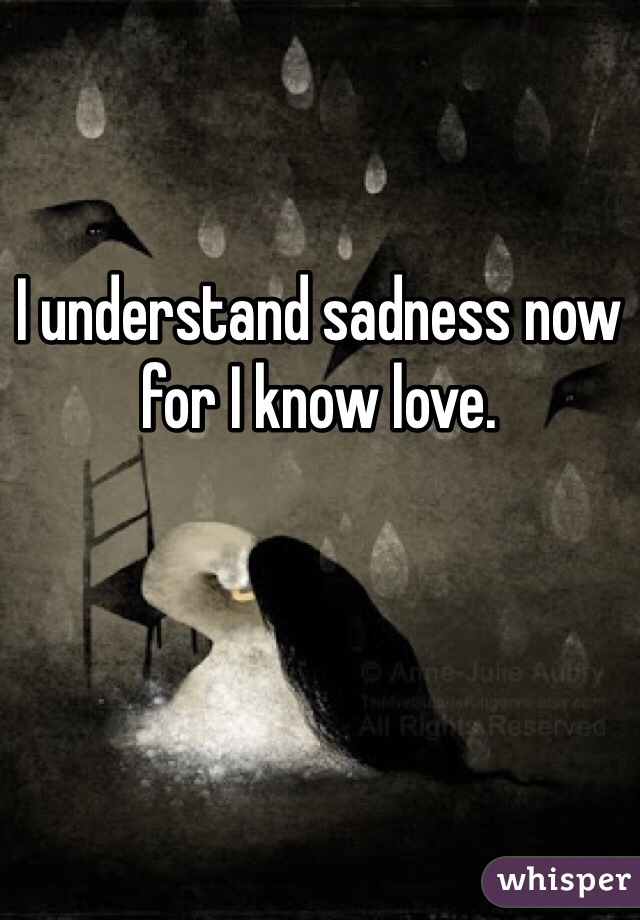 I understand sadness now for I know love.