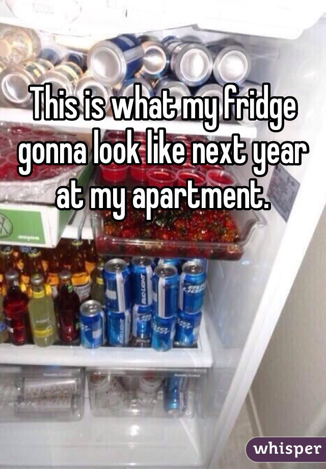 This is what my fridge gonna look like next year at my apartment.