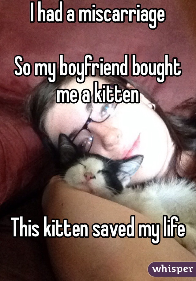 I had a miscarriage   So my boyfriend bought me a kitten      This kitten saved my life