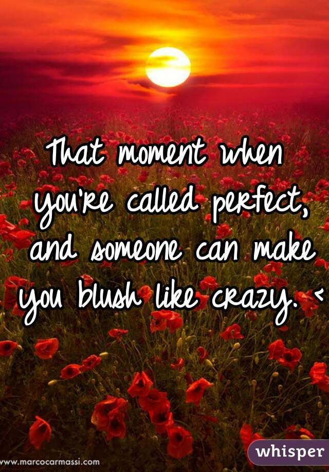 That moment when you're called perfect, and someone can make you blush like crazy. <3