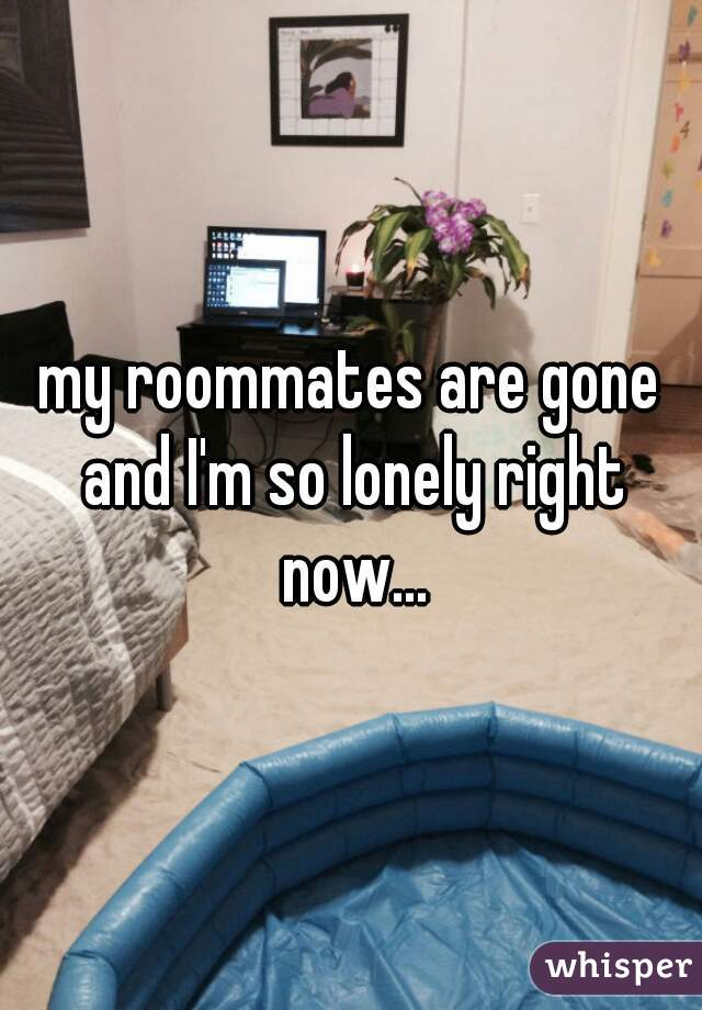 my roommates are gone and I'm so lonely right now...