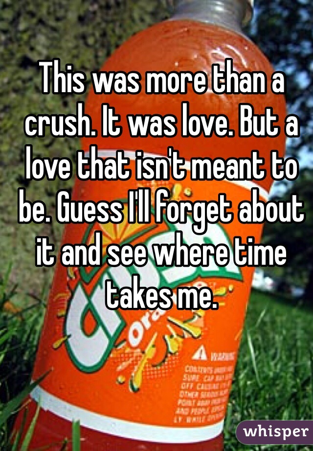 This was more than a crush. It was love. But a love that isn't meant to be. Guess I'll forget about it and see where time takes me.