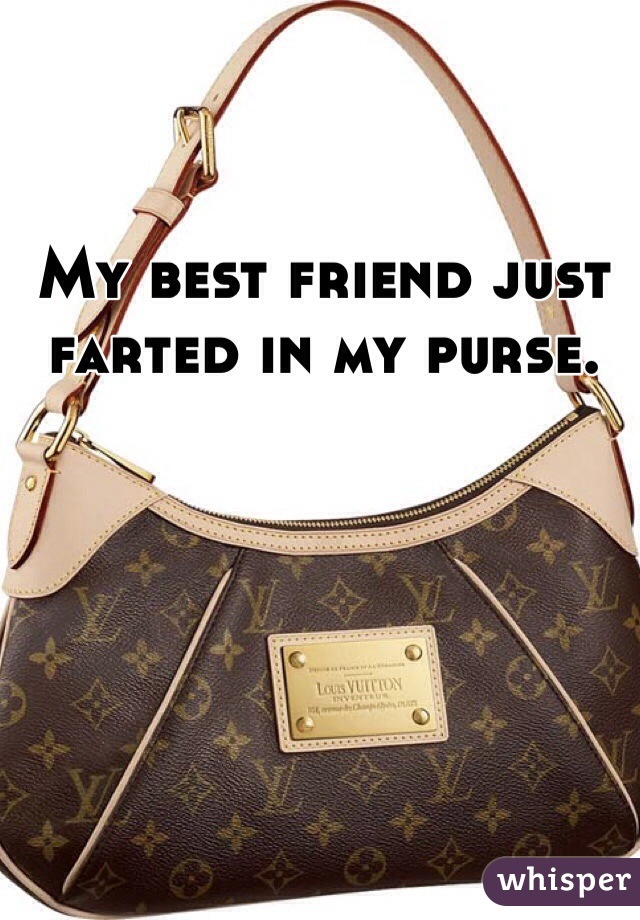 My best friend just  farted in my purse.