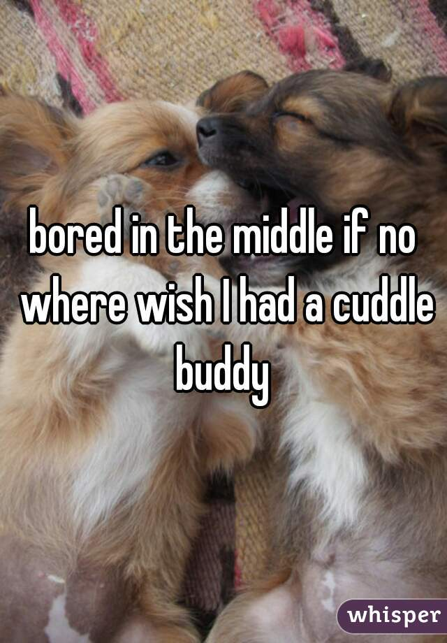 bored in the middle if no where wish I had a cuddle buddy