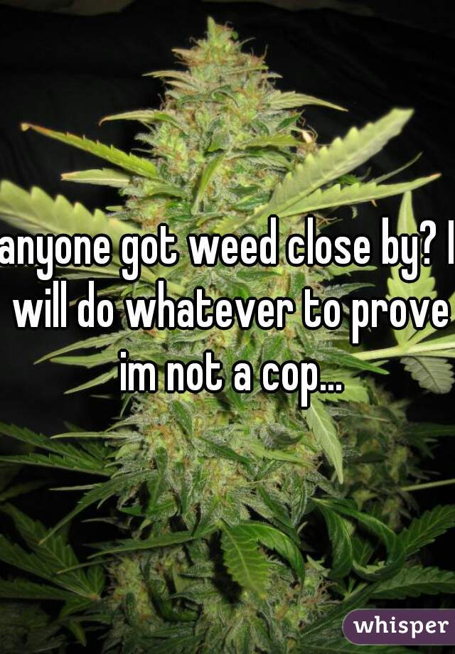 anyone got weed close by? I will do whatever to prove im not a cop...
