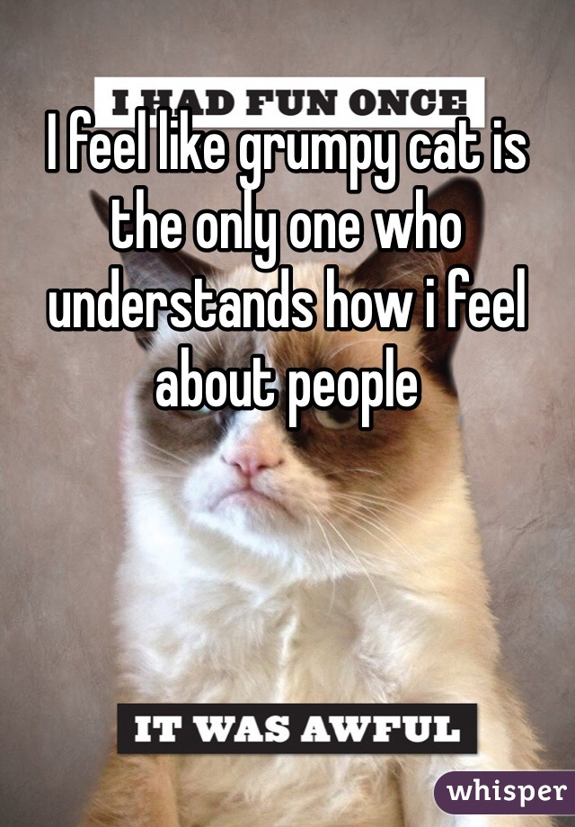I feel like grumpy cat is the only one who understands how i feel about people