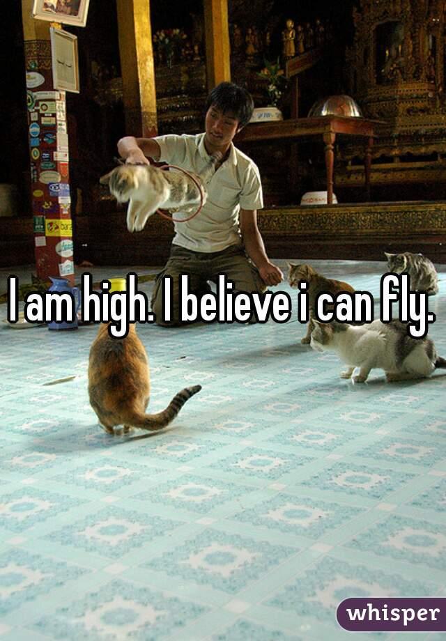 I am high. I believe i can fly.