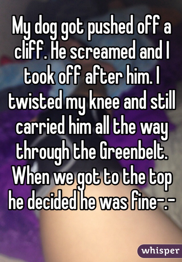 My dog got pushed off a cliff. He screamed and I took off after him. I twisted my knee and still carried him all the way through the Greenbelt. When we got to the top he decided he was fine-.-