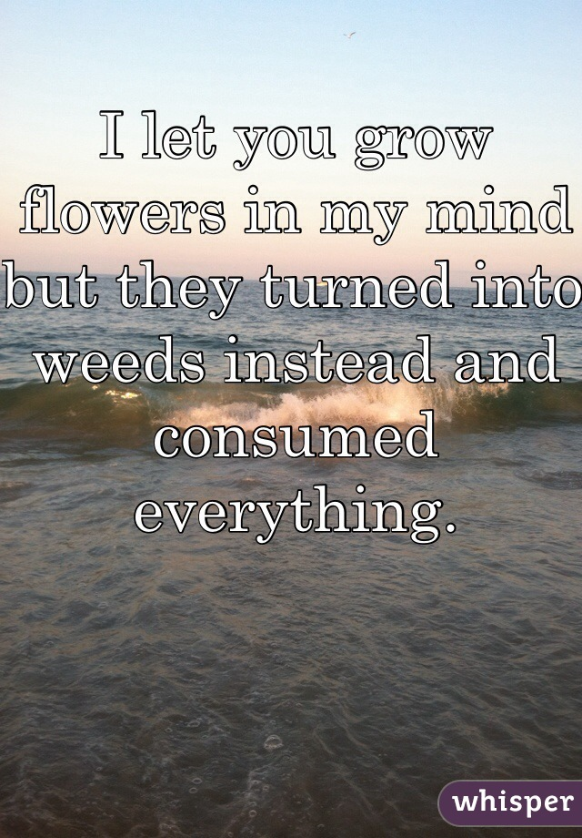 I let you grow flowers in my mind but they turned into weeds instead and consumed everything.