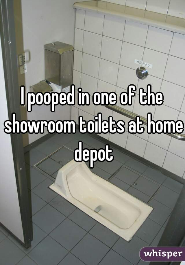 I pooped in one of the showroom toilets at home depot