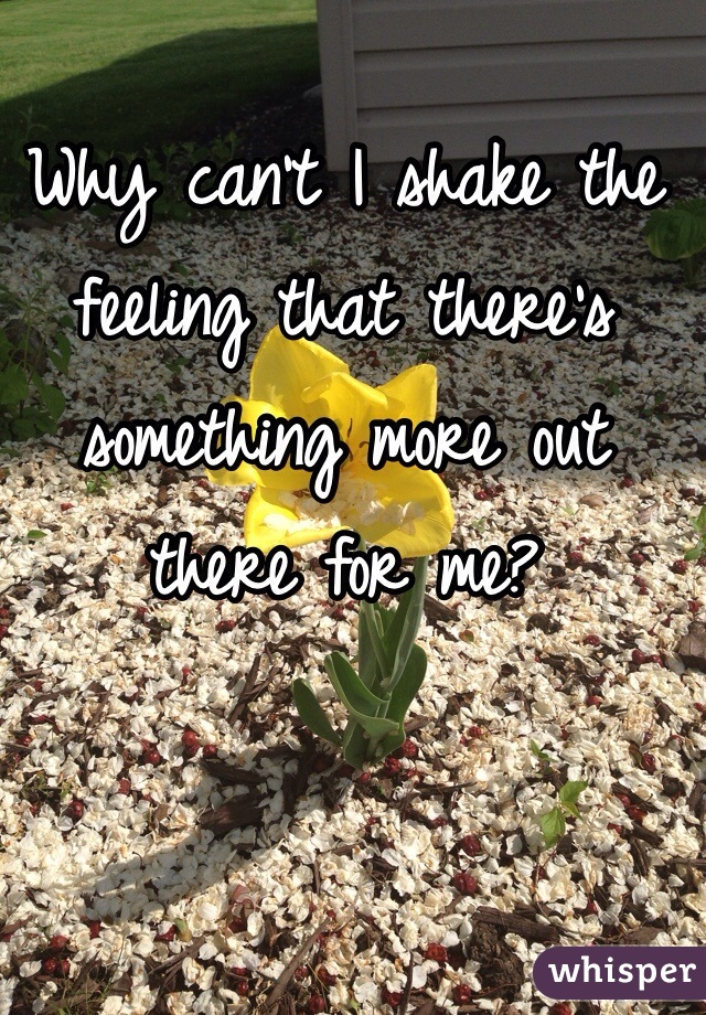 Why can't I shake the feeling that there's something more out there for me?