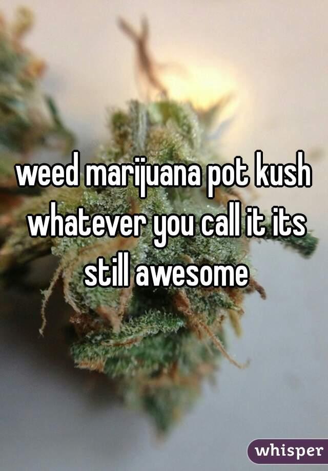 weed marijuana pot kush whatever you call it its still awesome