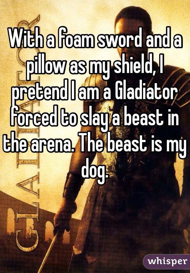 With a foam sword and a pillow as my shield, I pretend I am a Gladiator forced to slay a beast in the arena. The beast is my dog.