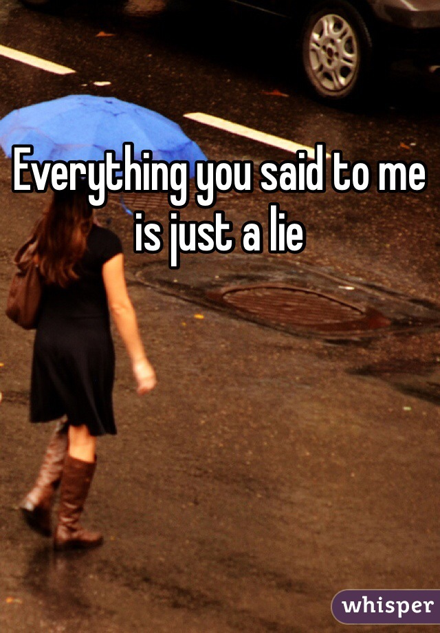 Everything you said to me is just a lie