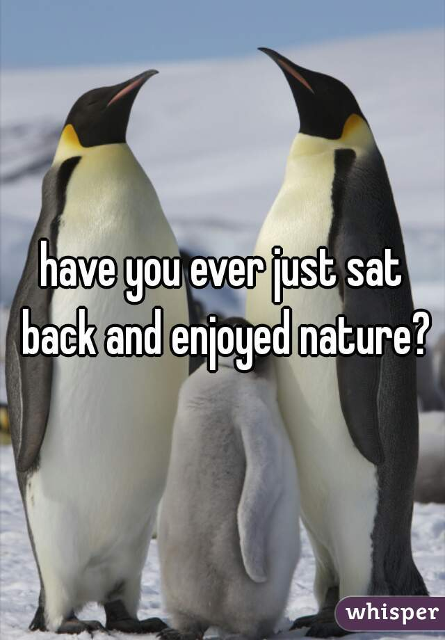 have you ever just sat back and enjoyed nature?