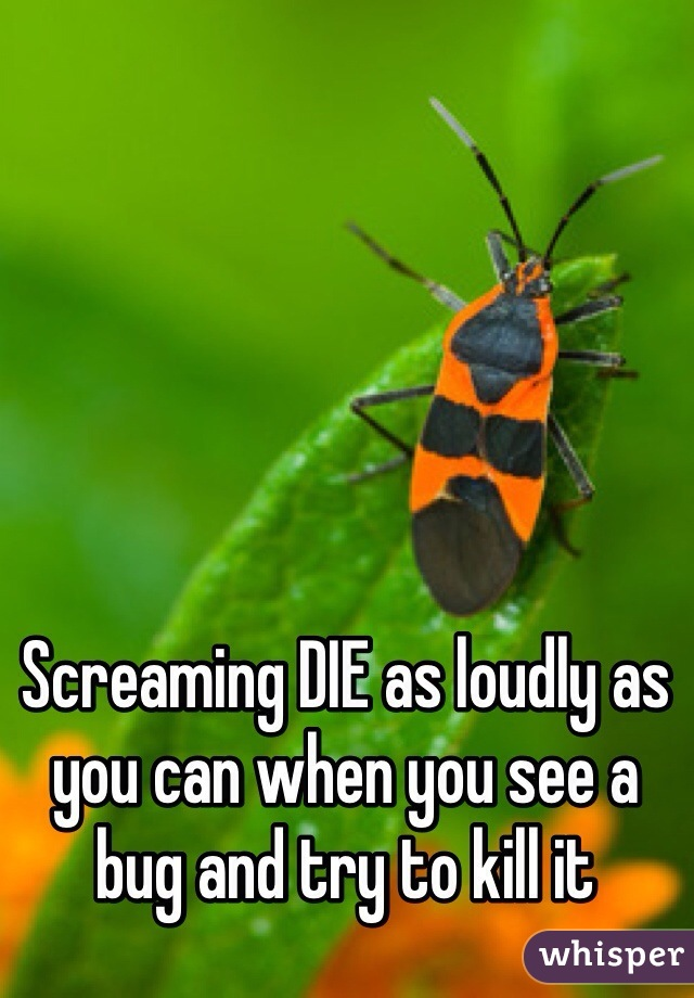 Screaming DIE as loudly as you can when you see a bug and try to kill it