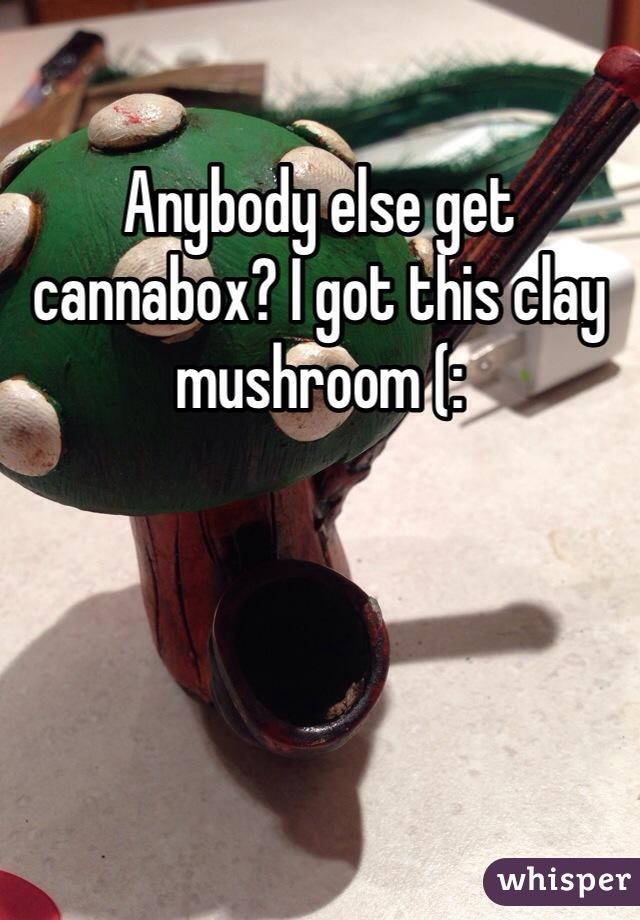 Anybody else get cannabox? I got this clay mushroom (:
