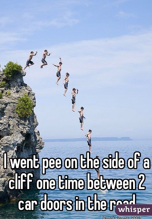 I went pee on the side of a cliff one time between 2 car doors in the road