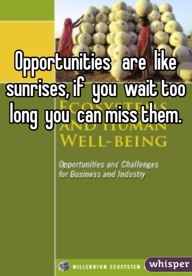 Opportunities   are  like sunrises, if  you  wait too long  you  can miss them.