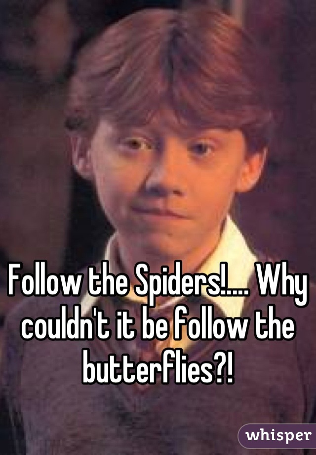Follow the Spiders!.... Why couldn't it be follow the butterflies?!