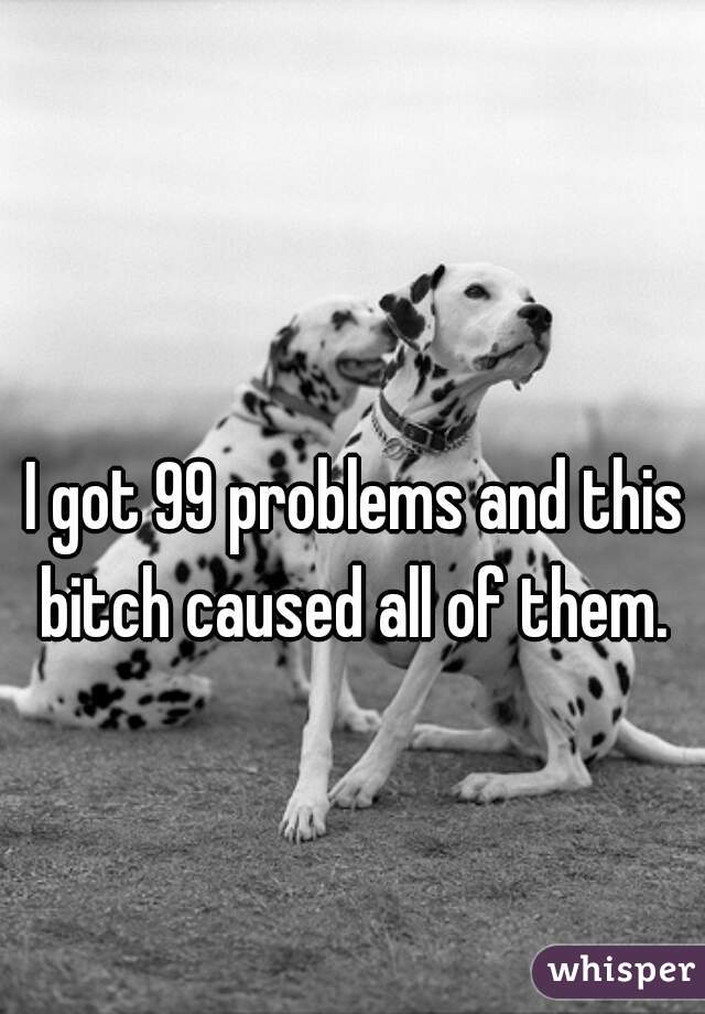 I got 99 problems and this bitch caused all of them.