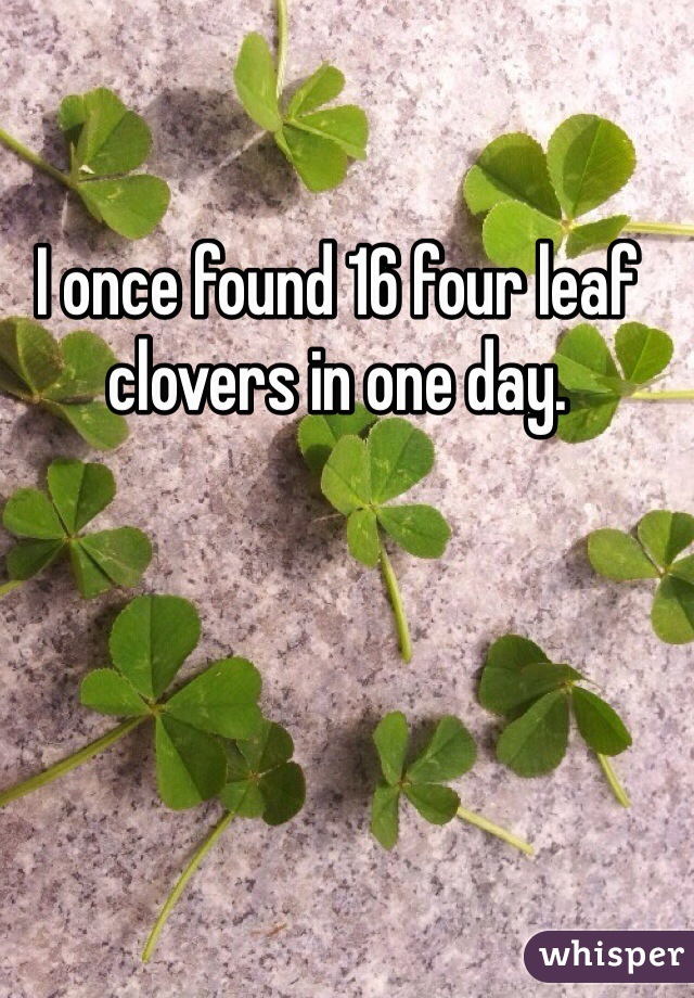 I once found 16 four leaf clovers in one day.