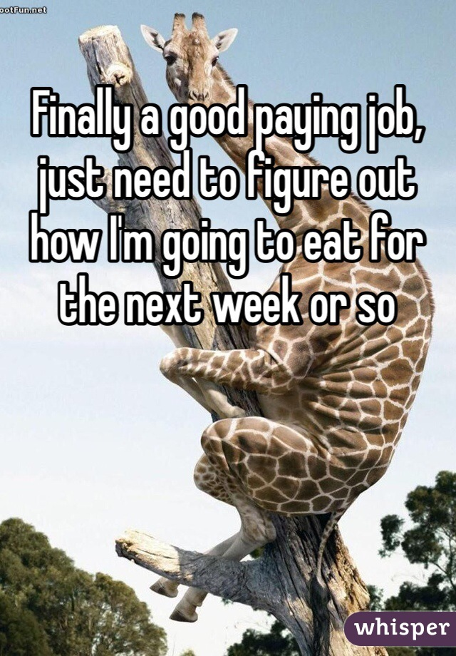 Finally a good paying job, just need to figure out how I'm going to eat for the next week or so