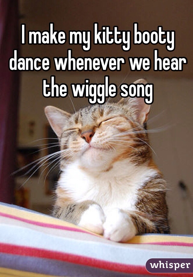 I make my kitty booty dance whenever we hear the wiggle song