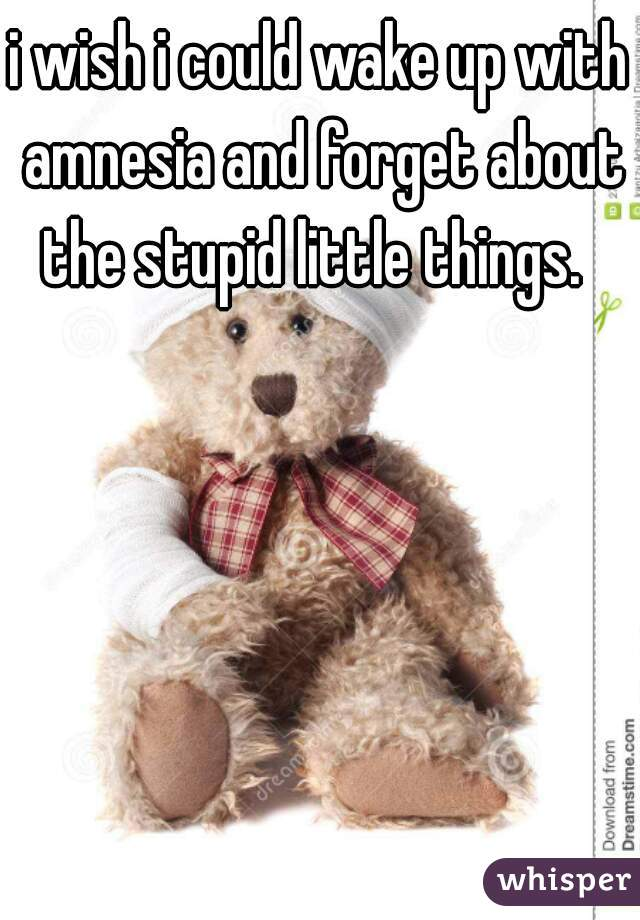 i wish i could wake up with amnesia and forget about the stupid little things.