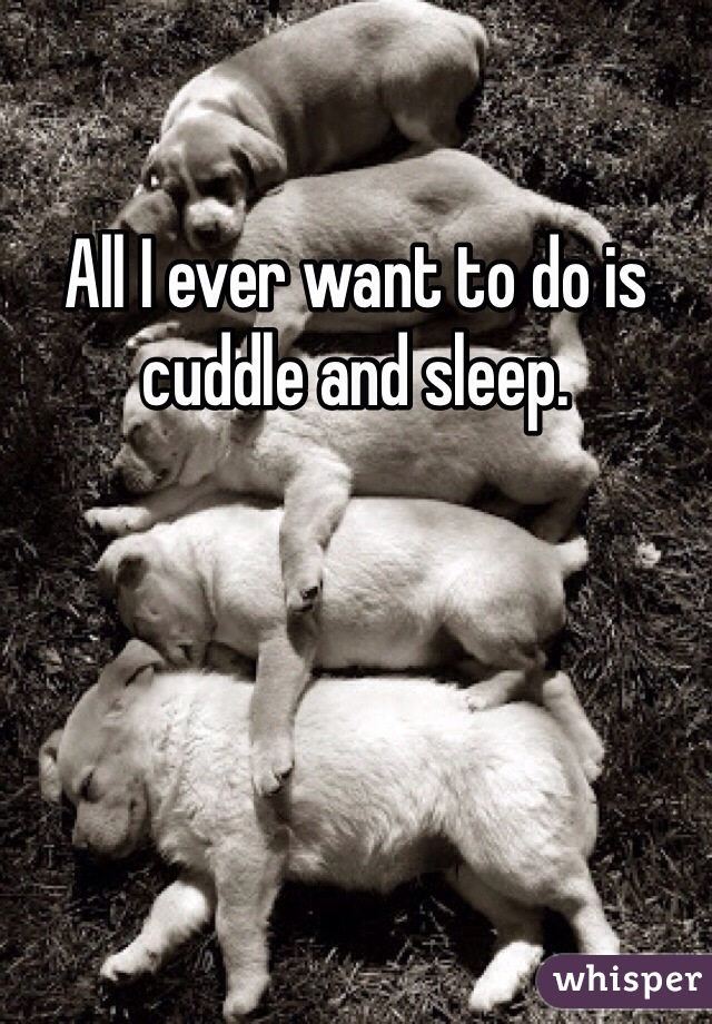 All I ever want to do is cuddle and sleep.