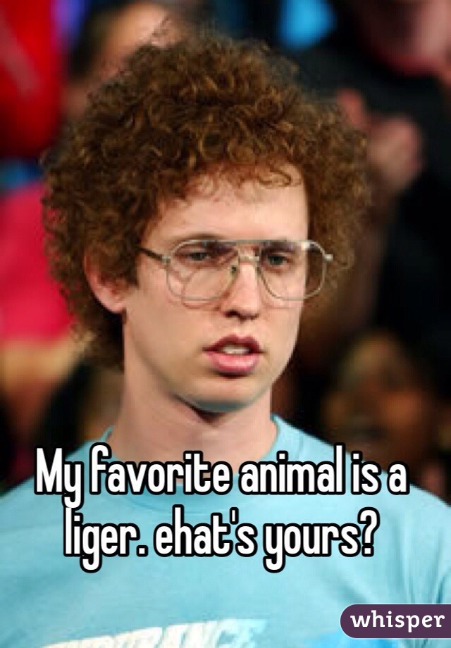 My favorite animal is a liger. ehat's yours?