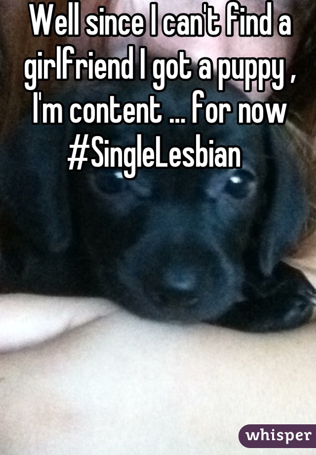 Well since I can't find a girlfriend I got a puppy , I'm content … for now #SingleLesbian