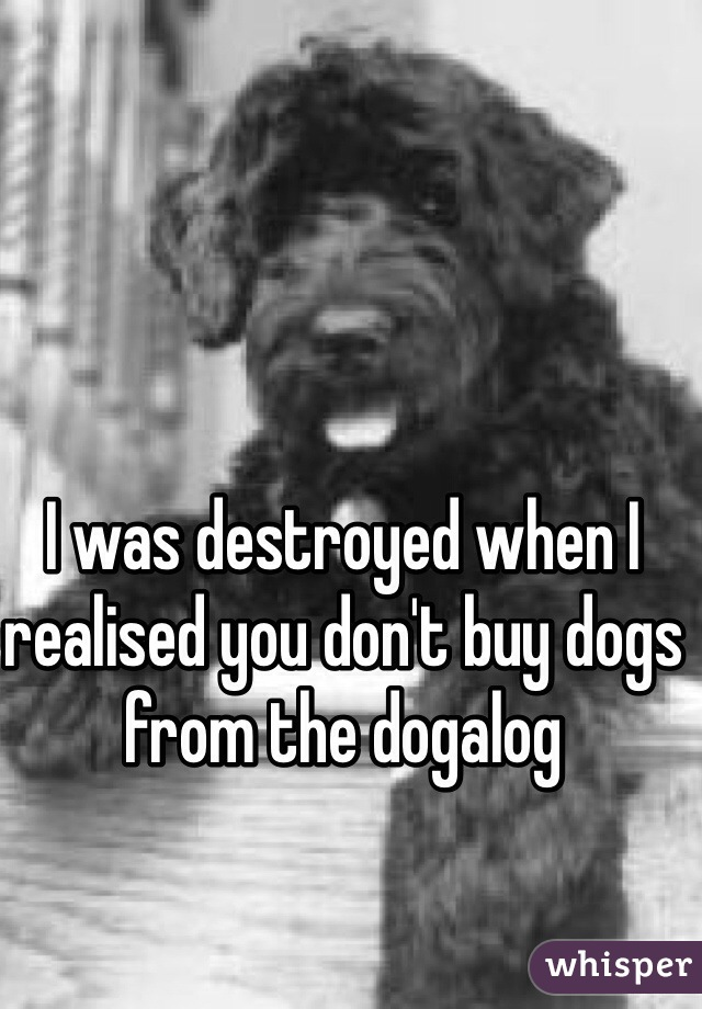 I was destroyed when I realised you don't buy dogs from the dogalog