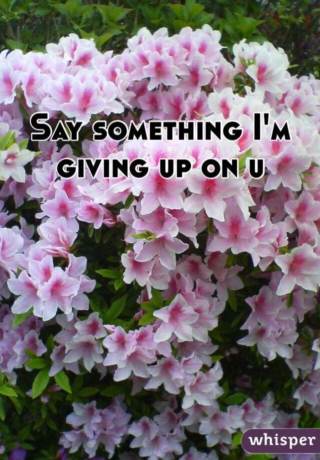 Say something I'm giving up on u