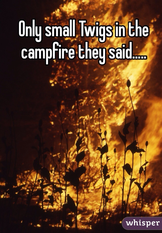 Only small Twigs in the campfire they said.....