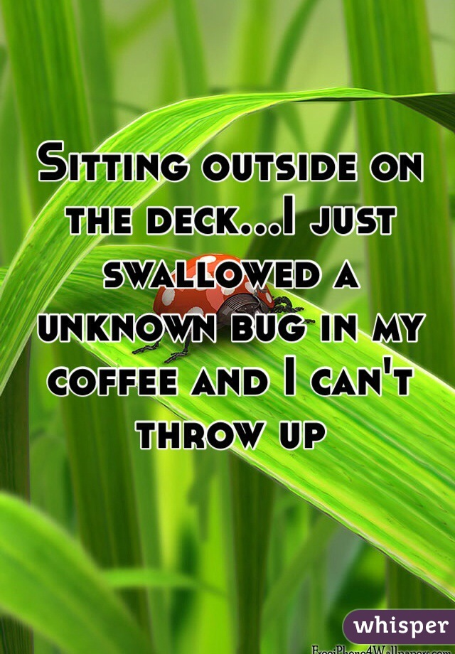 Sitting outside on the deck...I just swallowed a unknown bug in my coffee and I can't throw up