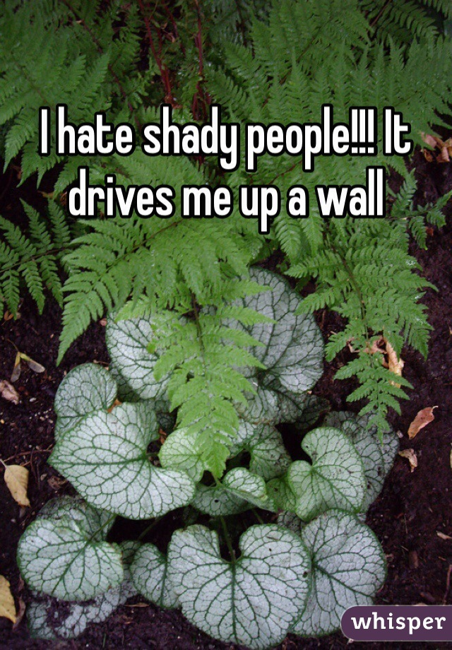 I hate shady people!!! It drives me up a wall