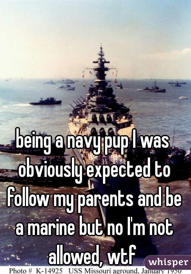 being a navy pup I was obviously expected to follow my parents and be a marine but no I'm not allowed, wtf