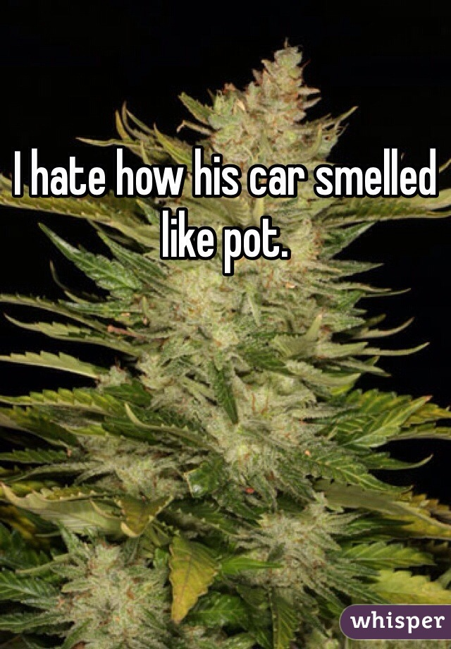 I hate how his car smelled like pot.
