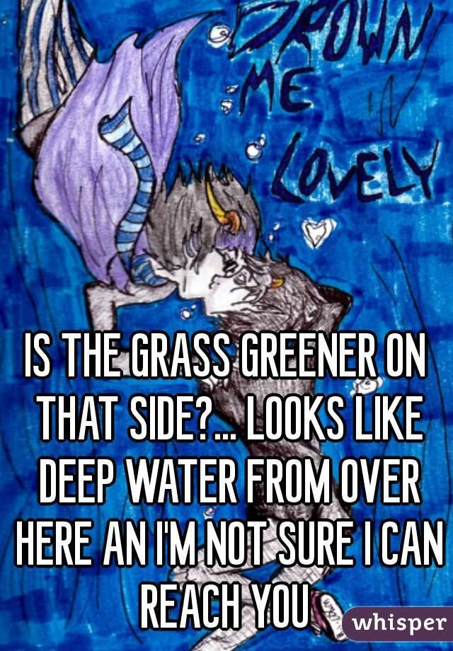 IS THE GRASS GREENER ON THAT SIDE?... LOOKS LIKE DEEP WATER FROM OVER HERE AN I'M NOT SURE I CAN REACH YOU