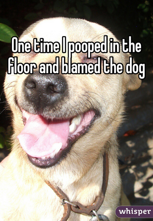 One time I pooped in the floor and blamed the dog