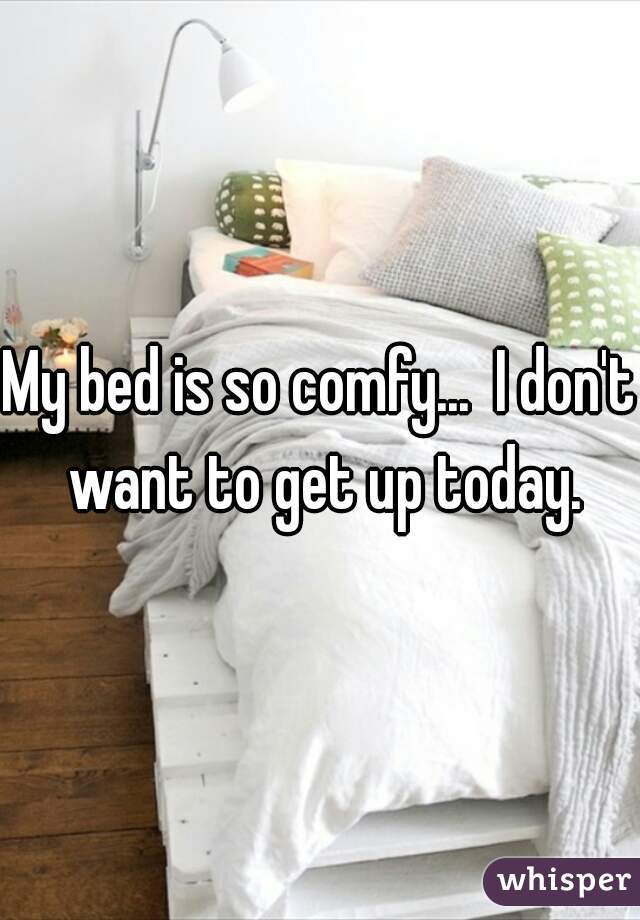 My bed is so comfy...  I don't want to get up today.