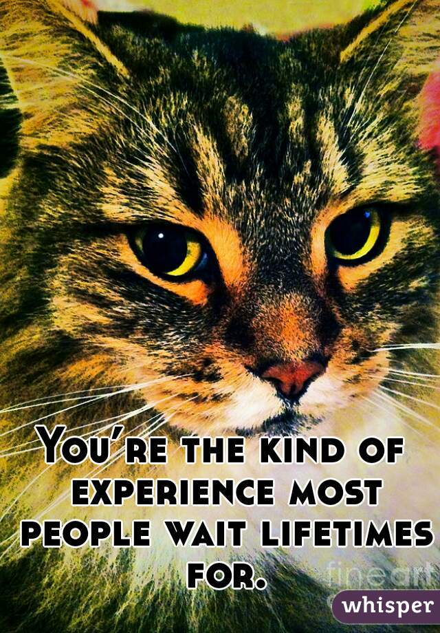 You're the kind of experience most people wait lifetimes for.