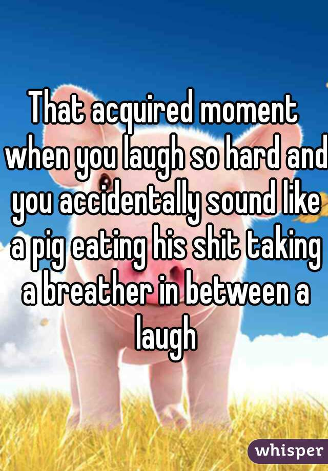 That acquired moment when you laugh so hard and you accidentally sound like a pig eating his shit taking a breather in between a laugh