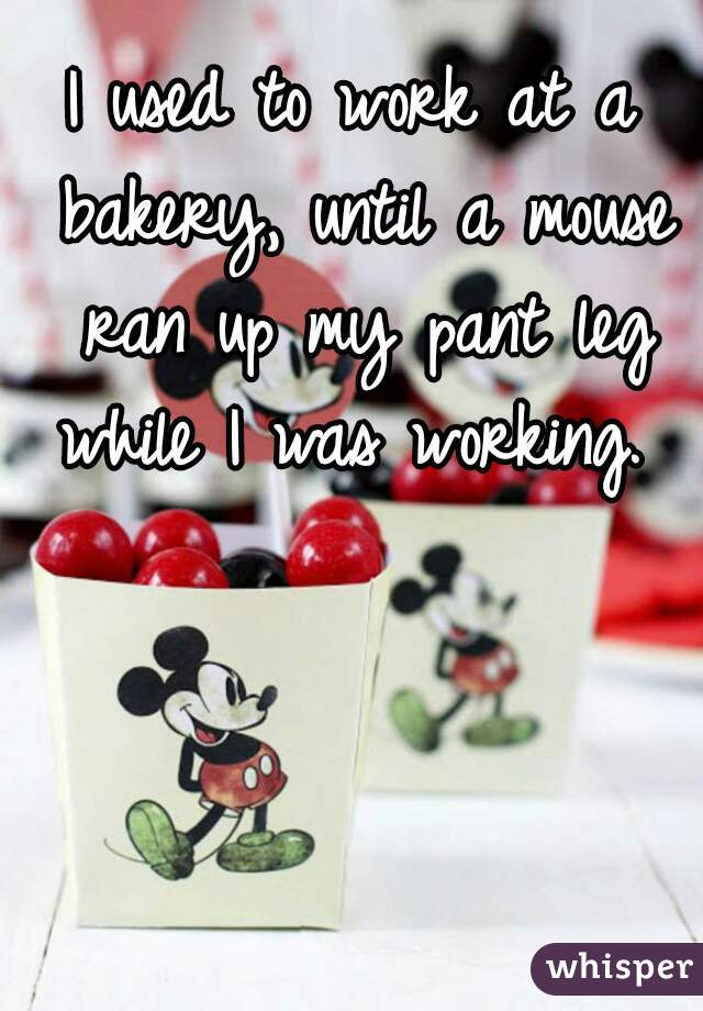 I used to work at a bakery, until a mouse ran up my pant leg while I was working.